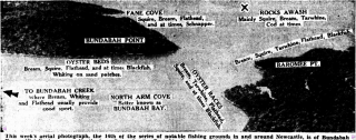 North Arm Cove Newcastle Sun 1950 retrieved from Trove