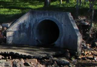Drainage in the Cove