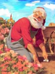Santa comes to the garden